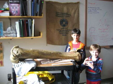 kids and elephant femur