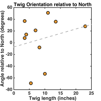 twig_orientation_north