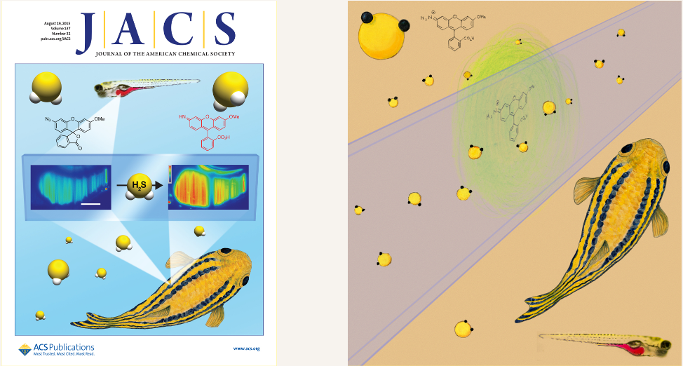 JACS_cover_and_RPsubmission