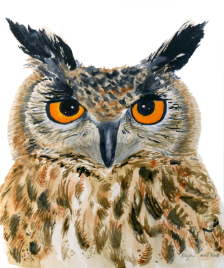 owl watercolor