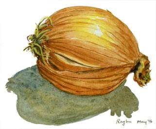 Onion_22May2016