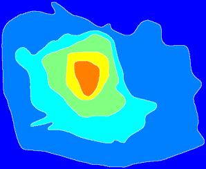 muskrat_contour_watershed