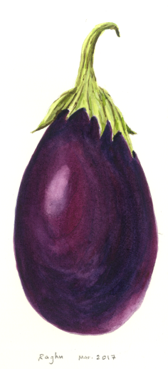 eggplant_21Mar2017.png
